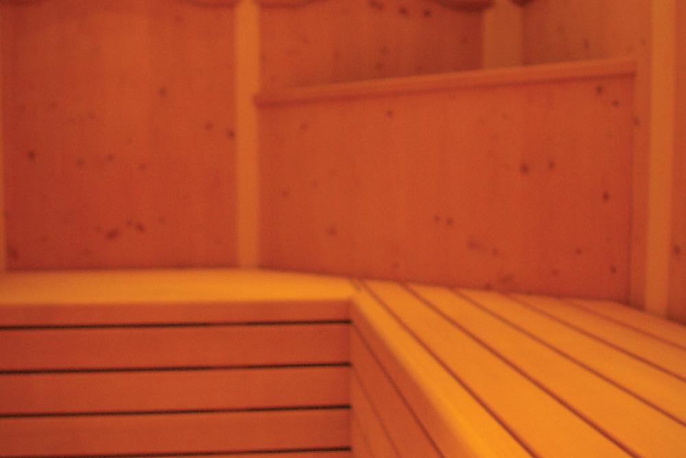 Garden Relais - Saune